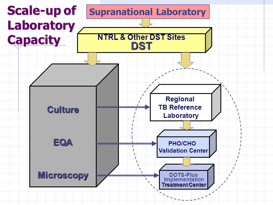 Scale-up of Laboratory Capacity CultureEQAMicroscopy NTRL & Other DST SitesDST Regional TB Reference Laboratory PHO/CHO Validation Center DOTS-Plus Implementation Treatment Center Supranational Laboratory