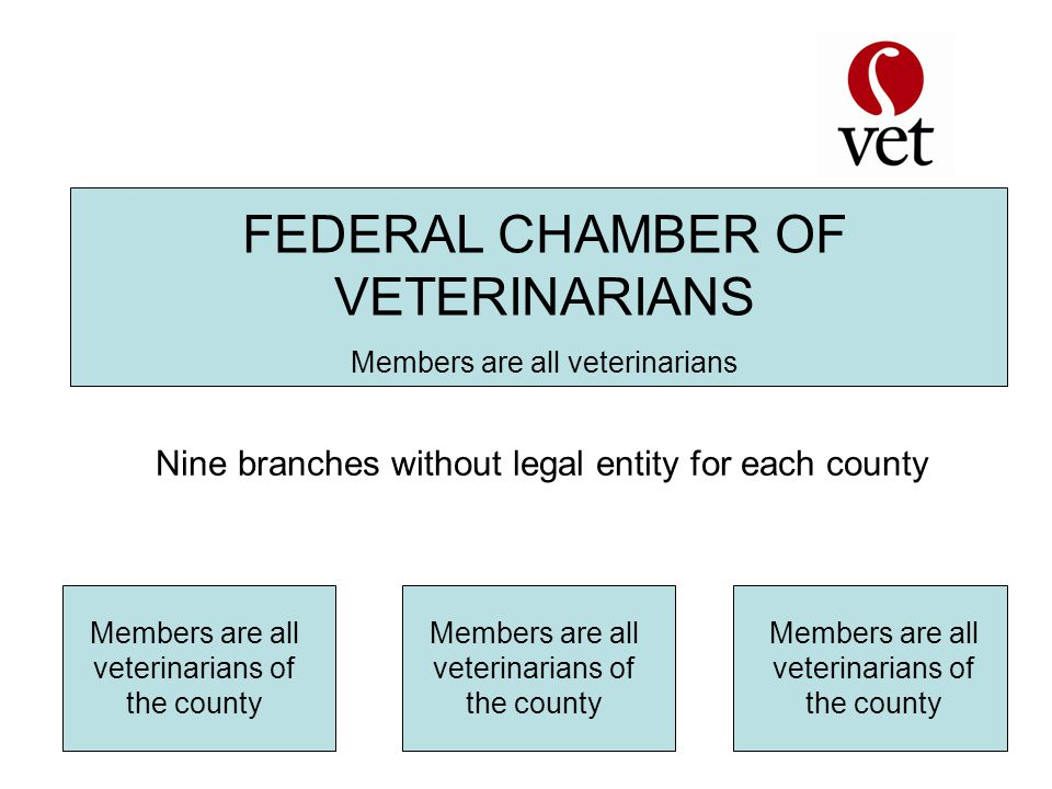 FEDERAL CHAMBER OF VETERINARIANS Members are all veterinarians Members are all veterinarians of the county Nine branches without legal entity for each county