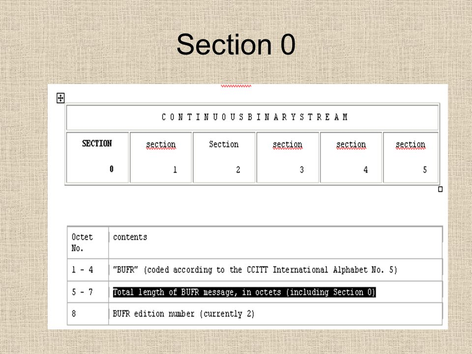 Section 0