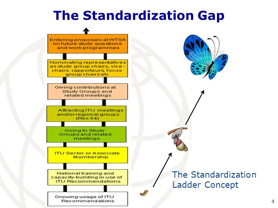 The Standardization Gap The Standardization Ladder Concept 4