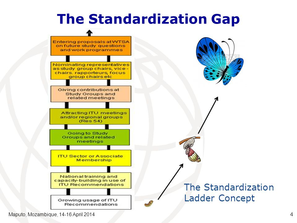 The Standardization Gap Maputo, Mozambique, 14-16 April 2014 4 The Standardization Ladder Concept