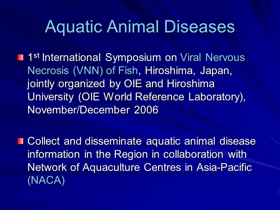 Aquatic Animal Diseases 1 st International Symposium on Viral Nervous Necrosis (VNN) of Fish, Hiroshima, Japan, jointly organized by OIE and Hiroshima University (OIE World Reference Laboratory), November/December 2006 Collect and disseminate aquatic animal disease information in the Region in collaboration with Network of Aquaculture Centres in Asia-Pacific (NACA)