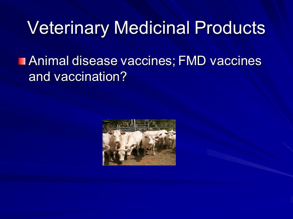 Veterinary Medicinal Products Animal disease vaccines; FMD vaccines and vaccination