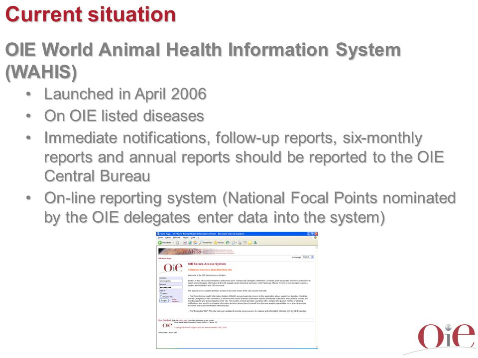 Current situation OIE World Animal Health Information System (WAHIS) Launched in April 2006Launched in April 2006 On OIE listed diseasesOn OIE listed diseases Immediate notifications, follow-up reports, six-monthly reports and annual reports should be reported to the OIE Central BureauImmediate notifications, follow-up reports, six-monthly reports and annual reports should be reported to the OIE Central Bureau On-line reporting system (National Focal Points nominated by the OIE delegates enter data into the system)On-line reporting system (National Focal Points nominated by the OIE delegates enter data into the system)