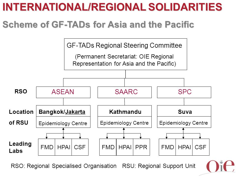 INTERNATIONAL/REGIONAL SOLIDARITIES Scheme of GF-TADs for Asia and the Pacific RSO: Regional Specialised Organisation ASEAN RSU: Regional Support Unit
