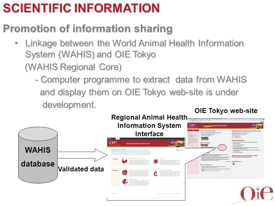 SCIENTIFIC INFORMATION Promotion of information sharing Linkage between the World Animal Health Information System (WAHIS) and OIE TokyoLinkage betwee
