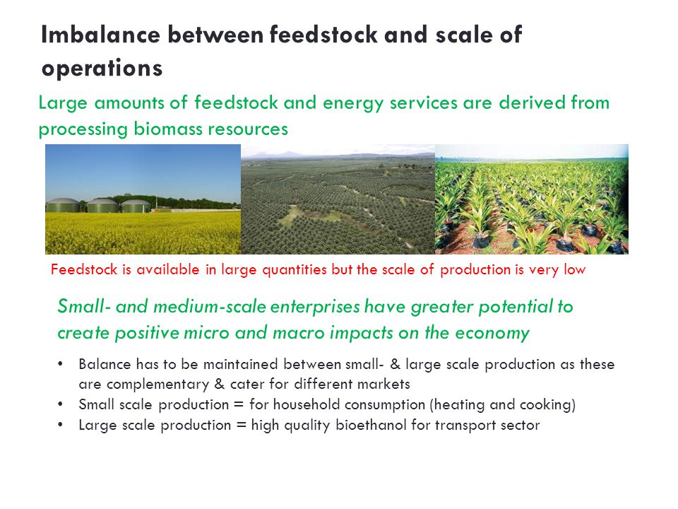 Imbalance between feedstock and scale of operations Feedstock is available in large quantities but the scale of production is very low Large amounts of feedstock and energy services are derived from processing biomass re­sources Balance has to be maintained between small- & large scale production as these are complementary & cater for different markets Small scale production = for household consumption (heating and cooking) Large scale production = high quality bioethanol for transport sector Small- and medium-scale enterprises have greater potential to create positive micro and macro impacts on the economy