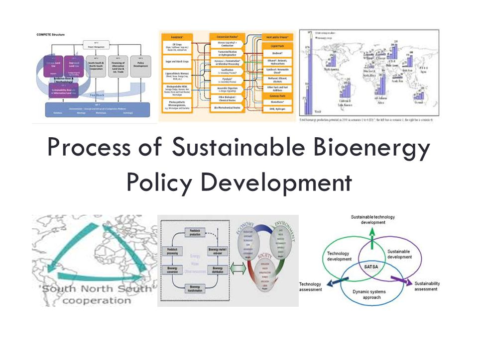Process of Sustainable Bioenergy Policy Development