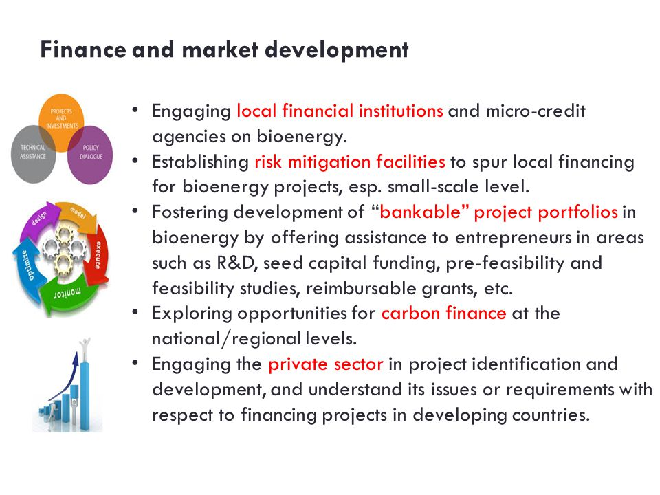 Finance and market development Engaging local financial institutions and micro-credit agencies on bioenergy.