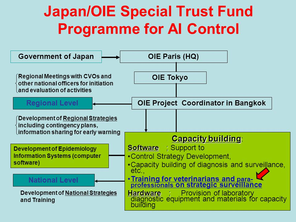 Japan/OIE Special Trust Fund Programme for AI Control Government of JapanOIE Paris (HQ) National Level Regional Level OIE Tokyo Capacity building Capacity building : Software ; Software ; Support to Control Strategy Development, Capacity building of diagnosis and surveillance, etc., Training for veterinarians and para- professionals on strategic surveillance Hardware; Hardware ; Provision of laboratory diagnostic equipment and materials for capacity building OIE Project Coordinator in Bangkok Development of National Strategies and Training Development of Epidemiology Information Systems (computer software) Development of Regional Strategies including contingency plans, information sharing for early warning Regional Meetings with CVOs and other national officers for initiation and evaluation of activities