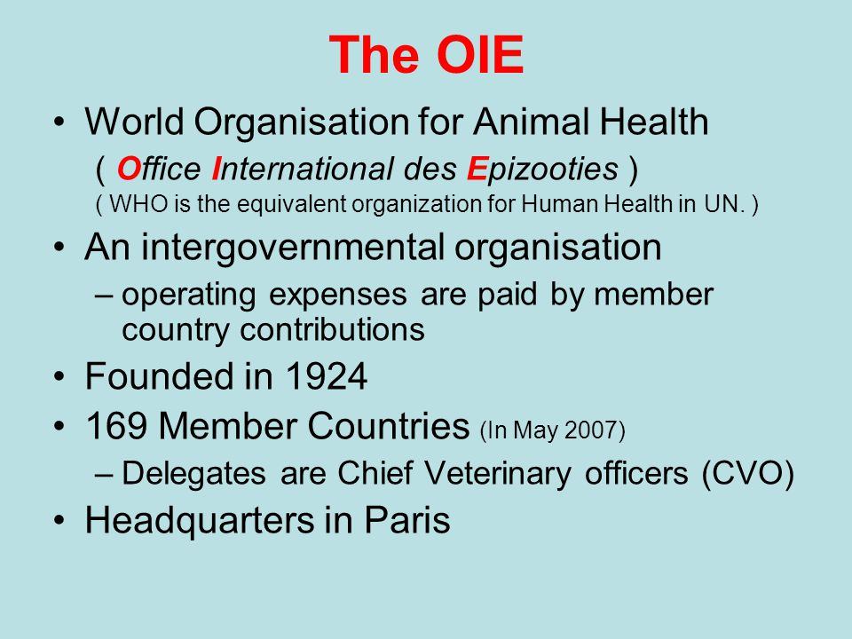 The OIE World Organisation for Animal Health ( Office International des Epizooties ) ( WHO is the equivalent organization for Human Health in UN.