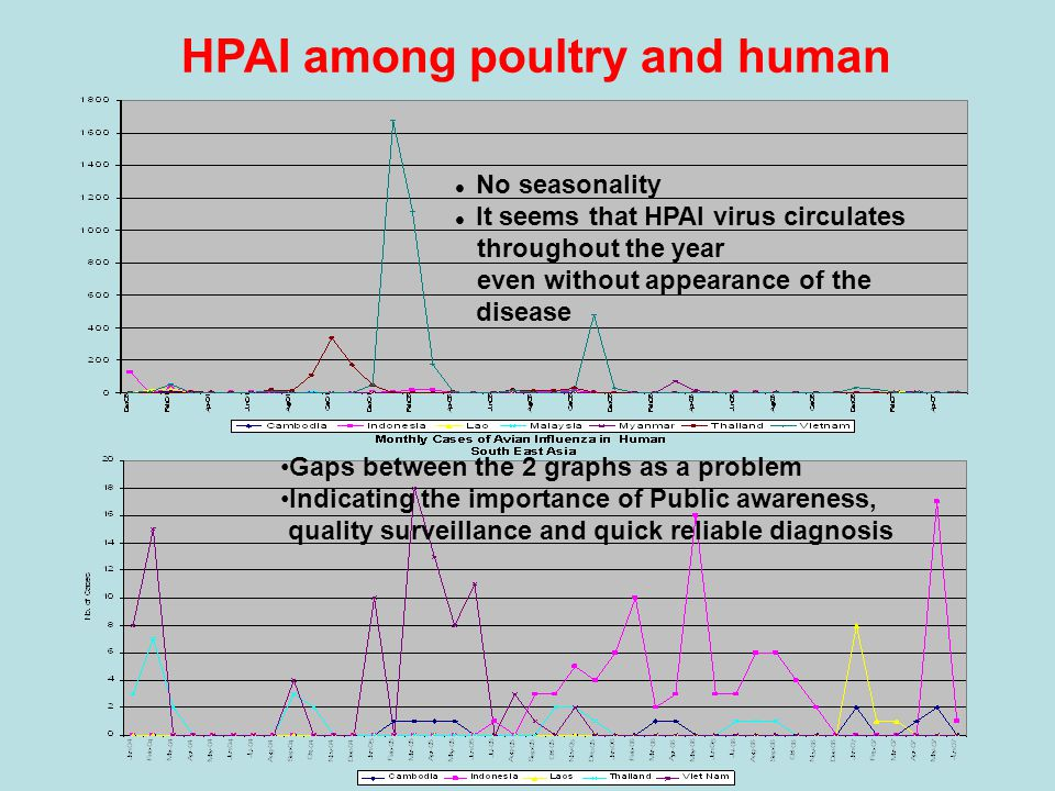 h g HPAI among poultry and human No seasonality It seems that HPAI virus circulates throughout the year even without appearance of the disease Gaps between the 2 graphs as a problem Indicating the importance of Public awareness, quality surveillance and quick reliable diagnosis