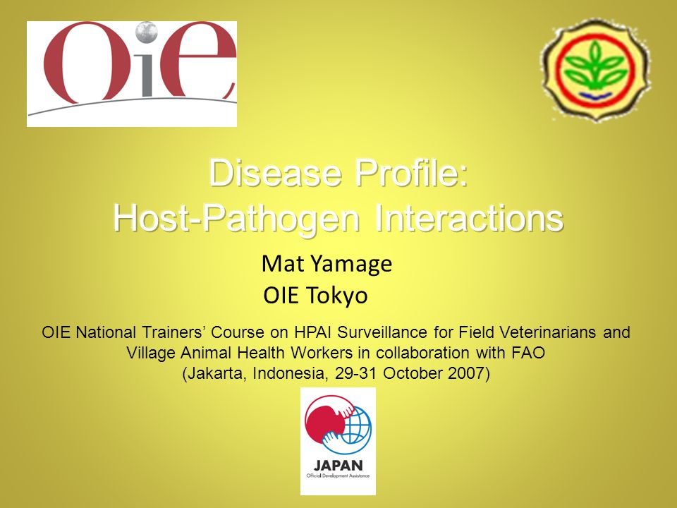 OIE National Trainers' Course on HPAI Surveillance for Field Veterinarians and Village Animal Health Workers in collaboration with FAO (Jakarta, Indonesia, 29-31 October 2007) Mat Yamage OIE Tokyo