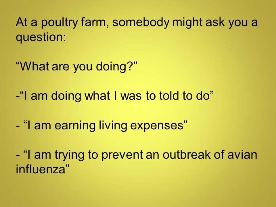 At a poultry farm, somebody might ask you a question: What are you doing - I am doing what I was to told to do - I am earning living expenses - I am trying to prevent an outbreak of avian influenza