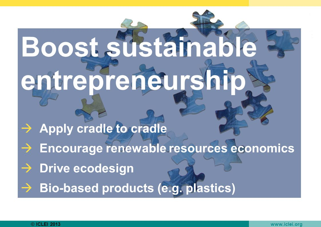 © ICLEI 2013 www.iclei.org Boost sustainable entrepreneurship  Apply cradle to cradle  Encourage renewable resources economics  Drive ecodesign  Bio-based products (e.g.