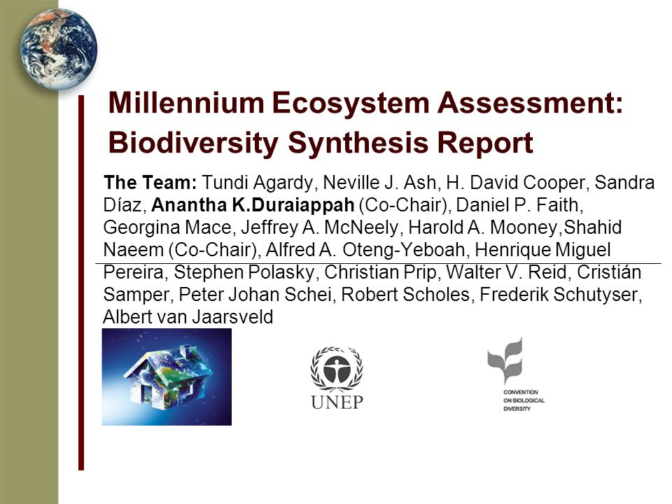 Millennium Ecosystem Assessment: Biodiversity Synthesis Report The Team: Tundi Agardy, Neville J.