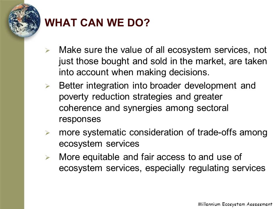 Millennium Ecosystem Assessment WHAT CAN WE DO.