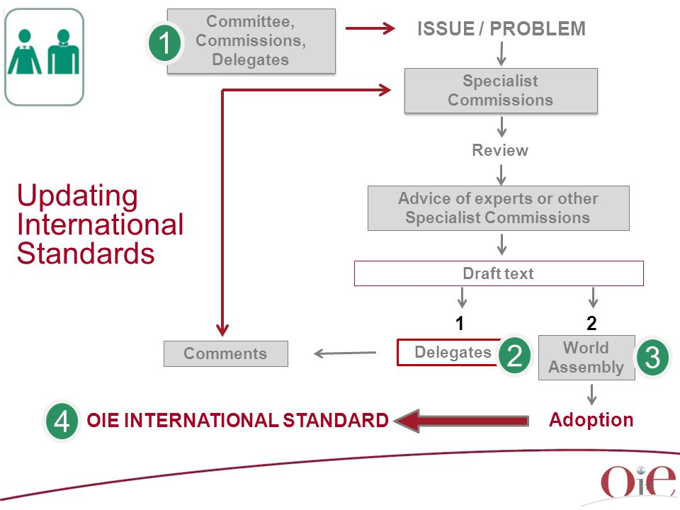 Updating International Standards Delegates ISSUE / PROBLEM Specialist Commissions Specialist Commissions Review Advice of experts or other Specialist Commissions Draft text Adoption Committee, Commissions, Delegates 12 OIE INTERNATIONAL STANDARD Comments 19 World Assembly 4 1 2 3