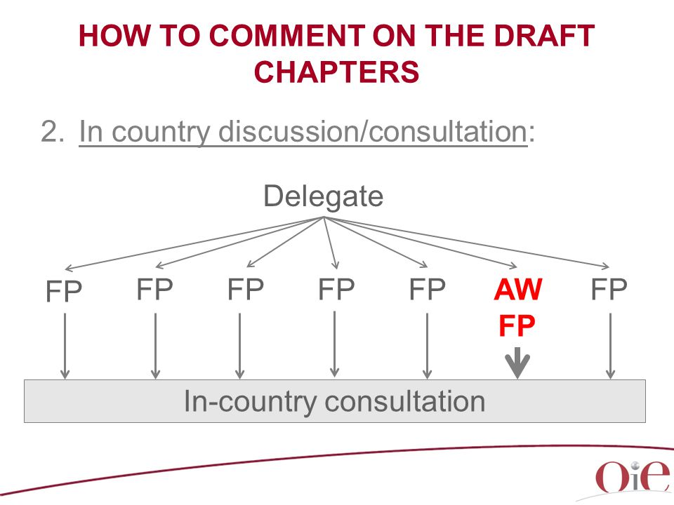 HOW TO COMMENT ON THE DRAFT CHAPTERS 2.In country discussion/consultation: Delegate FP AW FP FP In-country consultation