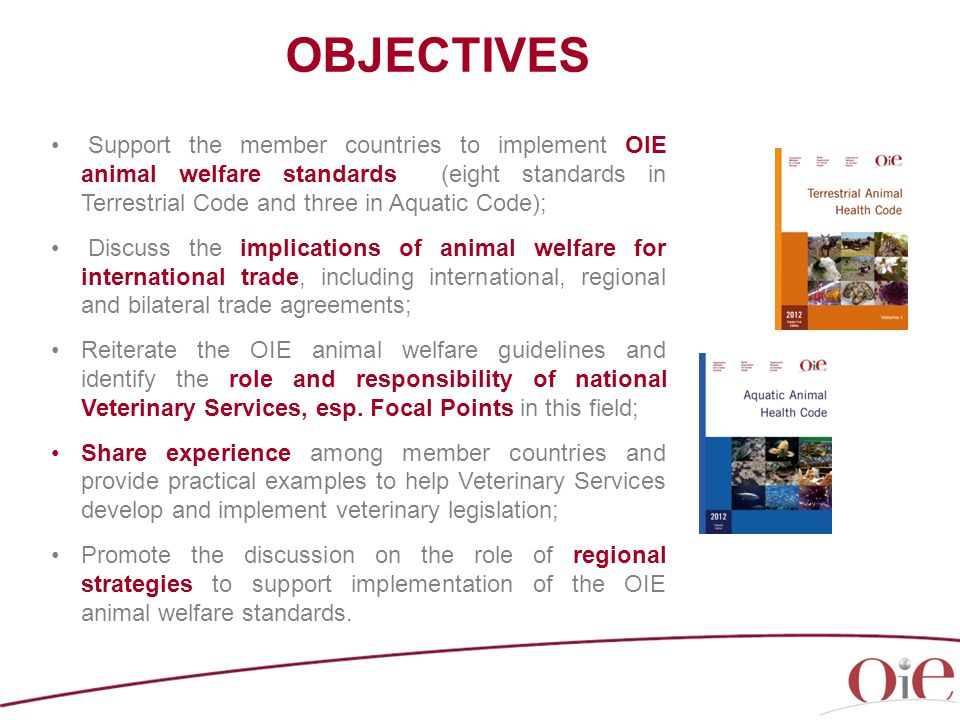 OBJECTIVES Support the member countries to implement OIE animal welfare standards (eight standards in Terrestrial Code and three in Aquatic Code); Discuss the implications of animal welfare for international trade, including international, regional and bilateral trade agreements; Reiterate the OIE animal welfare guidelines and identify the role and responsibility of national Veterinary Services, esp.