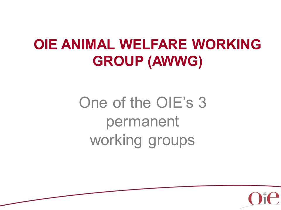 OIE ANIMAL WELFARE WORKING GROUP (AWWG) One of the OIE's 3 permanent working groups
