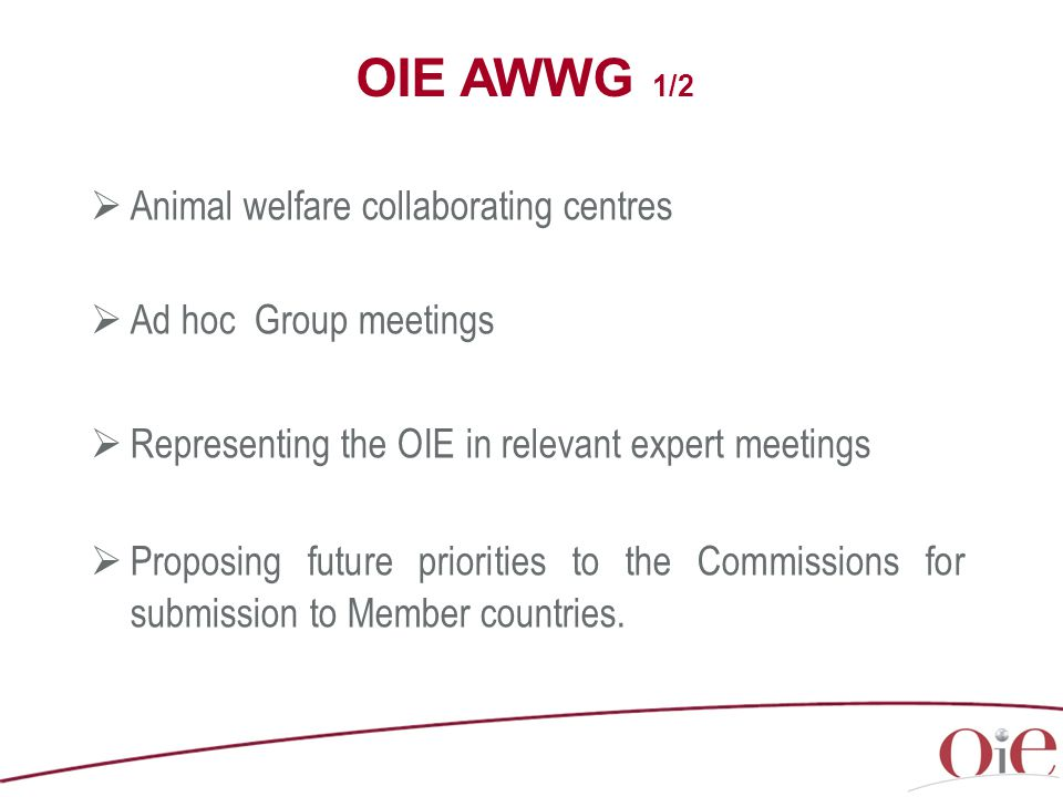  Animal welfare collaborating centres  Ad hoc Group meetings  Representing the OIE in relevant expert meetings  Proposing future priorities to the Commissions for submission to Member countries.