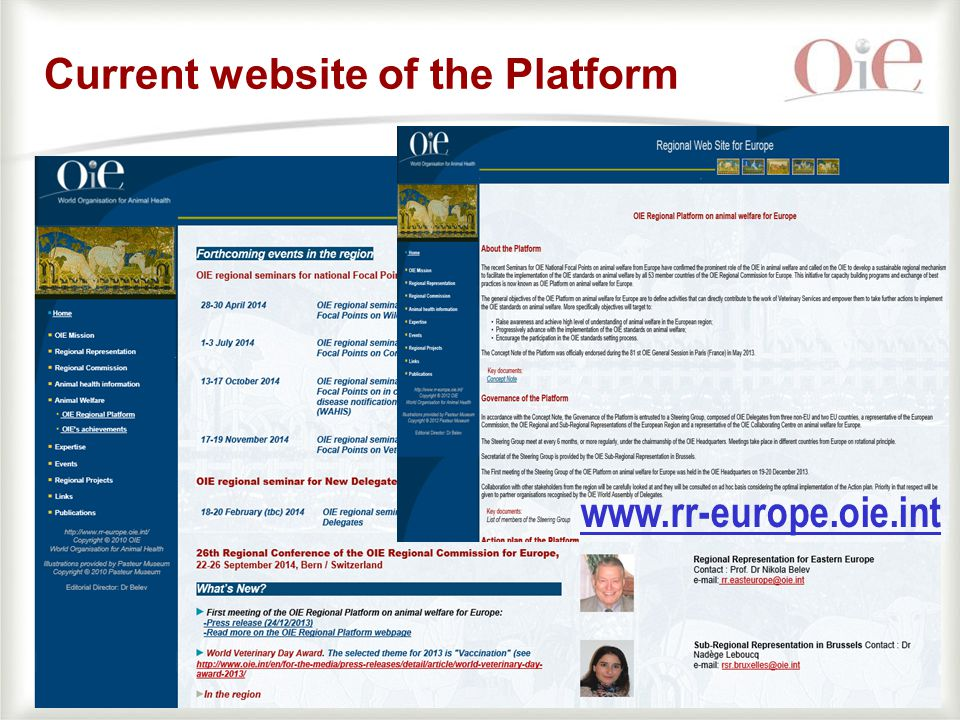 14 Current website of the Platform