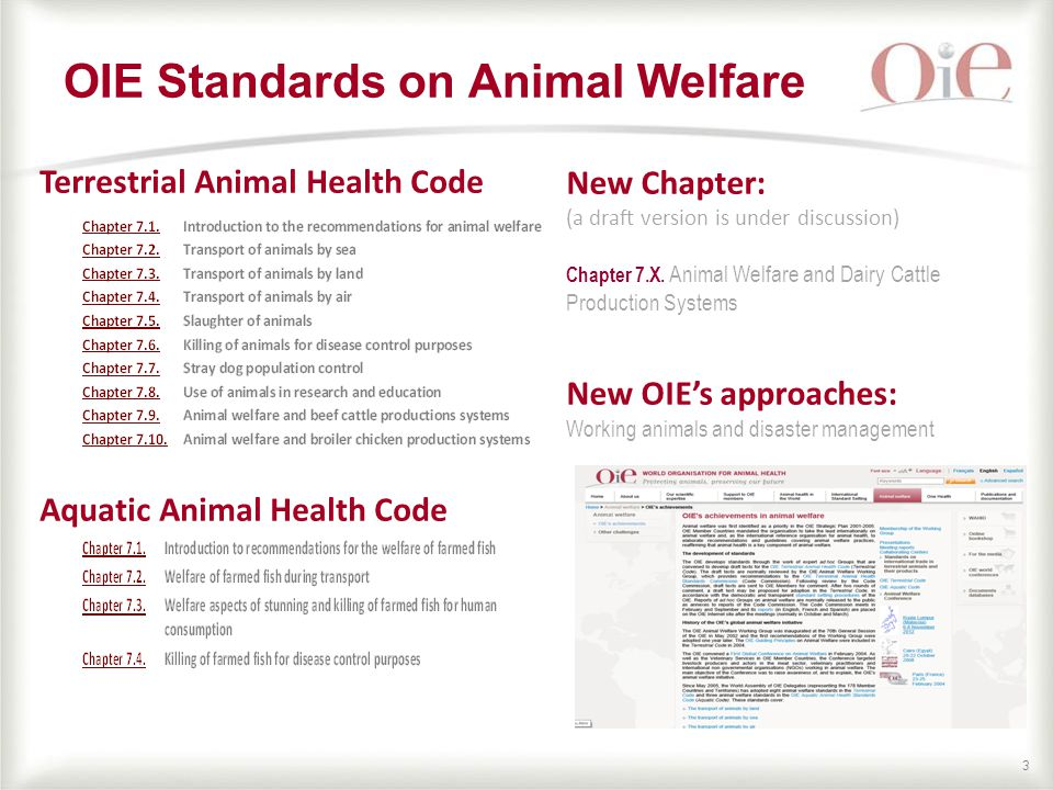 33 OIE Standards on Animal Welfare Terrestrial Animal Health Code Aquatic Animal Health Code New Chapter: (a draft version is under discussion) Chapter 7.X.