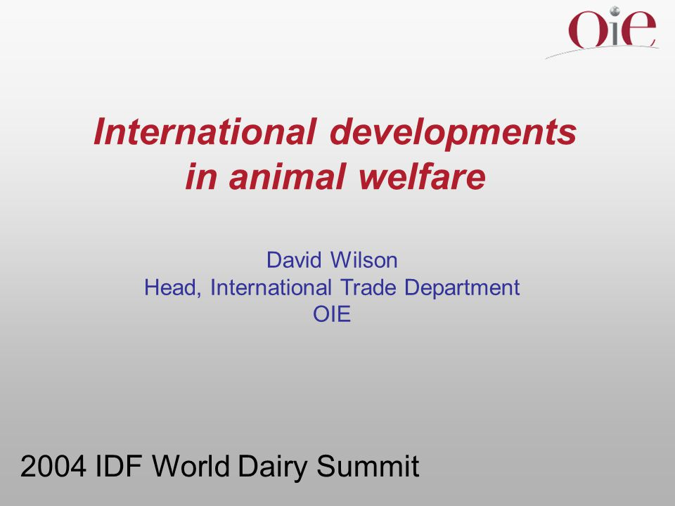 Topics for discussion  the OIE's work  background  OIE's international standards  animal welfare mandate  other international activities  WSPA's Declaration for Animal Welfare