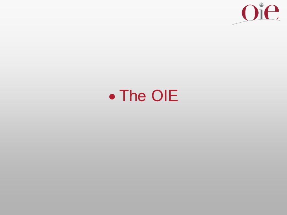 The OIE  World Organisation for Animal Health  an intergovernmental organisation  founded in 1924 – predates the UN  currently, 167 Member Countries  headquarters in Paris