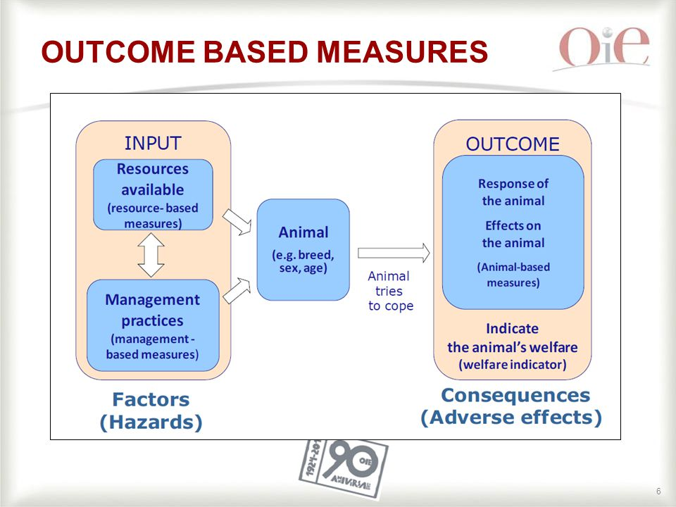 66 OUTCOME BASED MEASURES