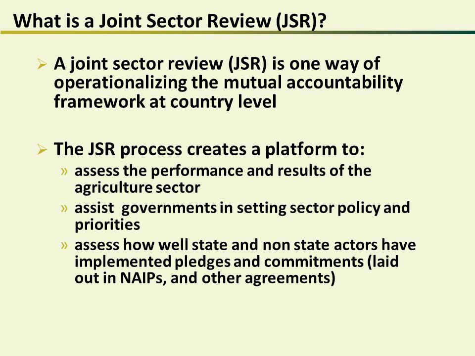 What is a Joint Sector Review (JSR).