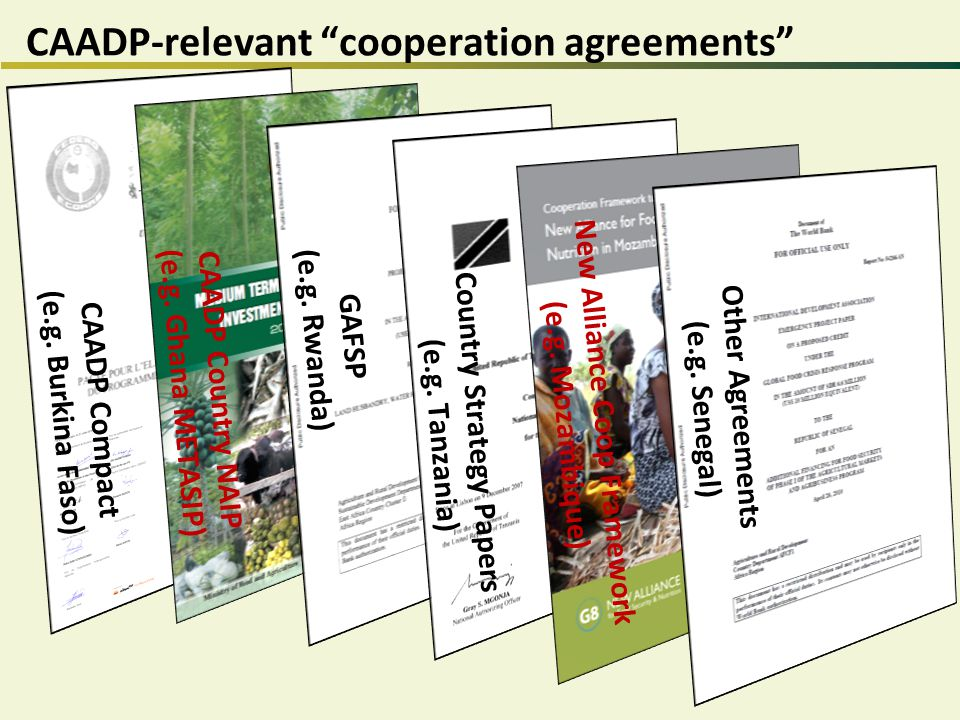 CAADP-relevant cooperation agreements CAADP Compact (e.g.