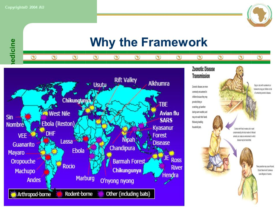 One world, One Africa, One health & One medicine Copyrights© 2004 AU Why the Framework