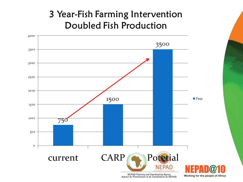 3 Year-Fish Farming Intervention Doubled Fish Production