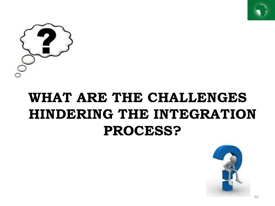 WHAT ARE THE CHALLENGES HINDERING THE INTEGRATION PROCESS? 46