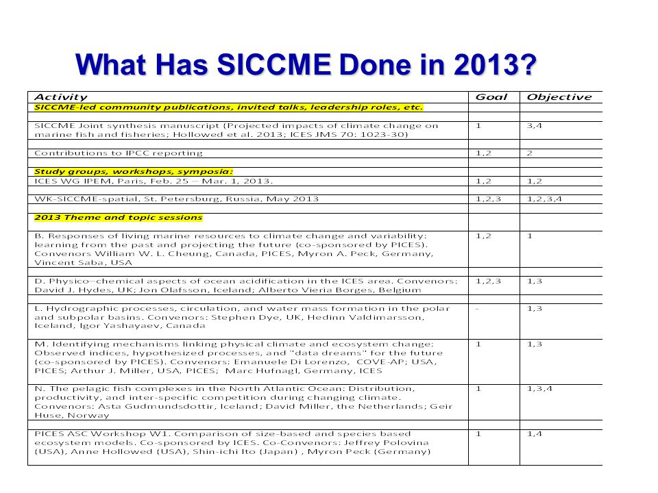 13 What Has SICCME Done in 2013