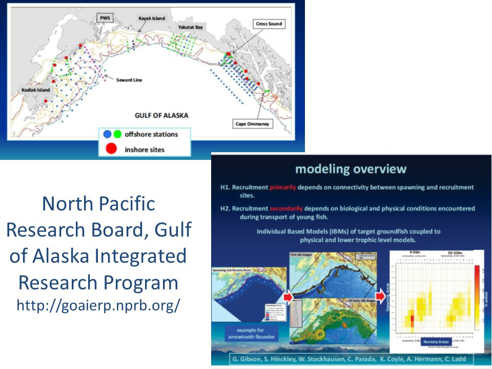 North Pacific Research Board, Gulf of Alaska Integrated Research Program