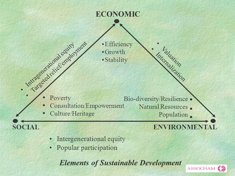 ECONOMIC SOCIALENVIRONMENTAL Intergenerational equity Popular participation Poverty Consultation/Empowerment Culture/Heritage Bio-diversity/Resilience Natural Resources Population Efficiency Growth Stability Intragenerational equity Targeted relief/employment Valuation Internalization Elements of Sustainable Development