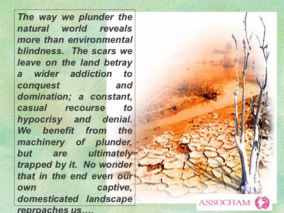 The way we plunder the natural world reveals more than environmental blindness.