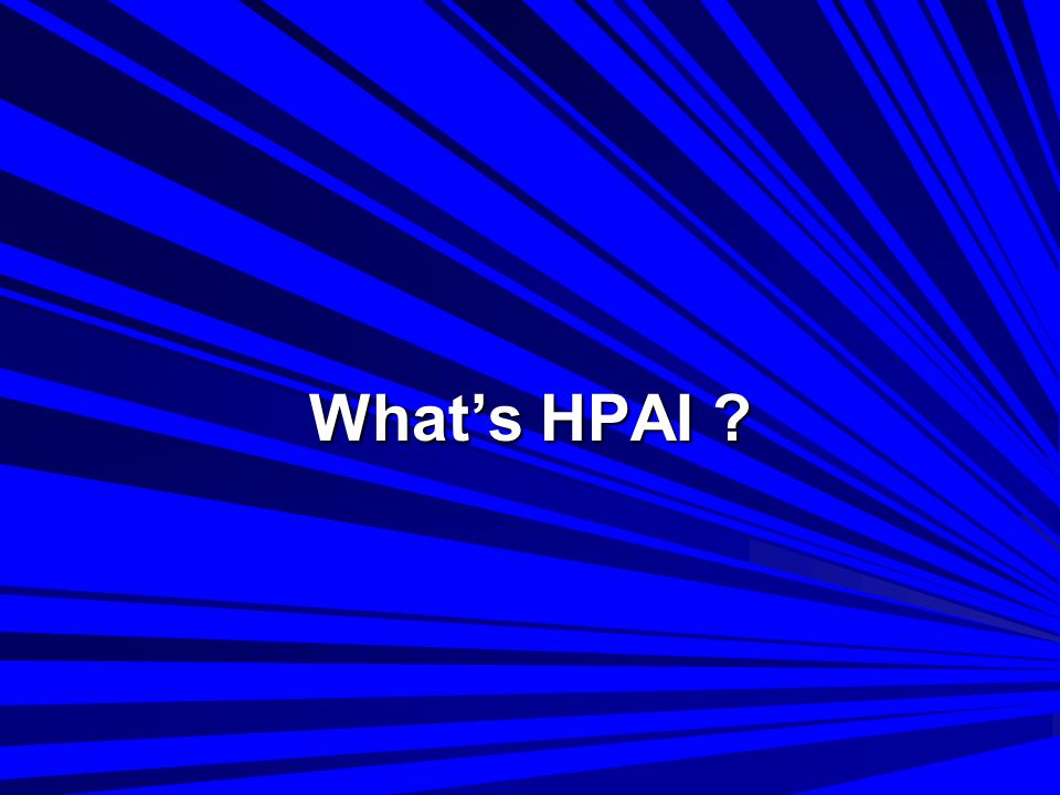 What's HPAI ?