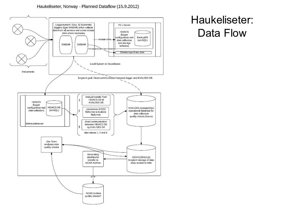 Haukeliseter: Data Flow