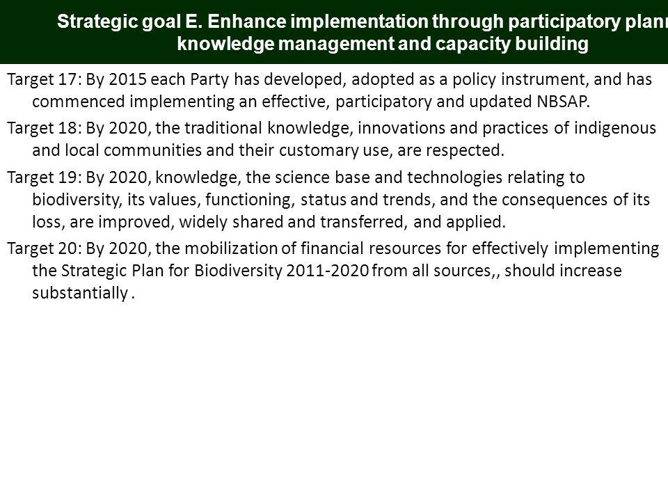 Strategic goal E.