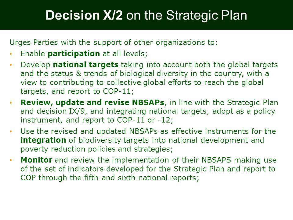 Urges Parties with the support of other organizations to: Enable participation at all levels; Develop national targets taking into account both the global targets and the status & trends of biological diversity in the country, with a view to contributing to collective global efforts to reach the global targets, and report to COP-11; Review, update and revise NBSAPs, in line with the Strategic Plan and decision IX/9, and integrating national targets, adopt as a policy instrument, and report to COP-11 or -12; Use the revised and updated NBSAPs as effective instruments for the integration of biodiversity targets into national development and poverty reduction policies and strategies; Monitor and review the implementation of their NBSAPS making use of the set of indicators developed for the Strategic Plan and report to COP through the fifth and sixth national reports; Decision X/2 on the Strategic Plan