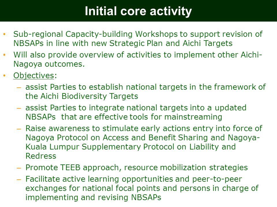 Sub-regional Capacity-building Workshops to support revision of NBSAPs in line with new Strategic Plan and Aichi Targets Will also provide overview of activities to implement other Aichi- Nagoya outcomes.