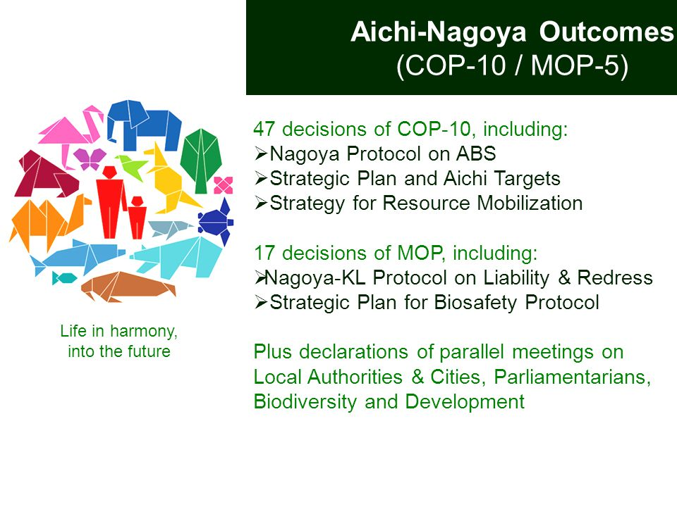 47 decisions of COP-10, including:  Nagoya Protocol on ABS  Strategic Plan and Aichi Targets  Strategy for Resource Mobilization 17 decisions of MO