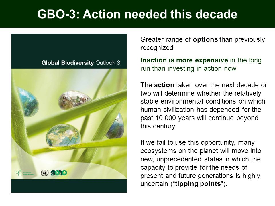 Greater range of options than previously recognized Inaction is more expensive in the long run than investing in action now The action taken over the next decade or two will determine whether the relatively stable environmental conditions on which human civilization has depended for the past 10,000 years will continue beyond this century.