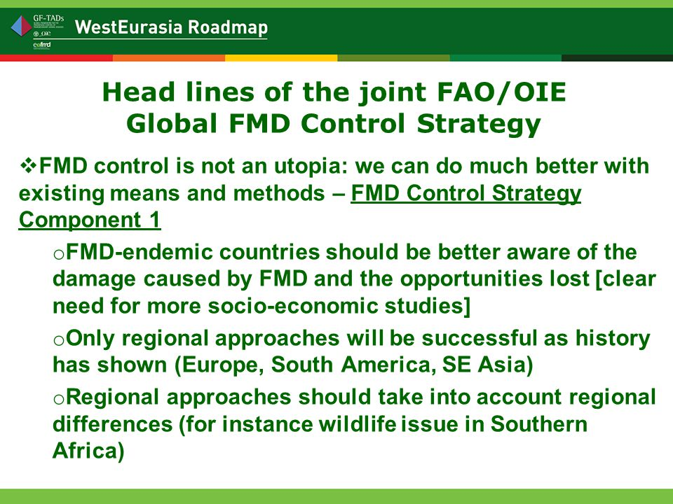 Head lines of the joint FAO/OIE Global FMD Control Strategy  FMD control is not an utopia: we can do much better with existing means and methods – FMD Control Strategy Component 1 o FMD-endemic countries should be better aware of the damage caused by FMD and the opportunities lost [clear need for more socio-economic studies] o Only regional approaches will be successful as history has shown (Europe, South America, SE Asia) o Regional approaches should take into account regional differences (for instance wildlife issue in Southern Africa)