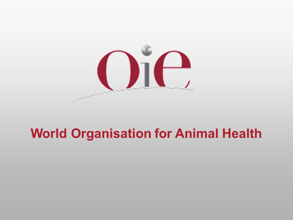 World Organisation for Animal Health