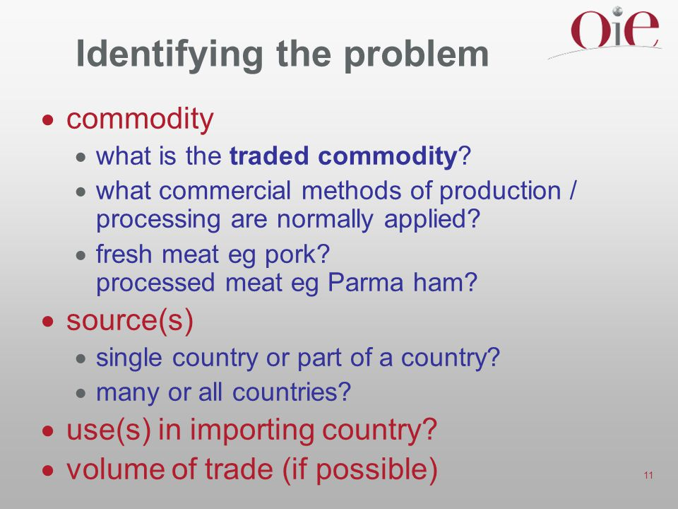 11 Identifying the problem  commodity  what is the traded commodity.